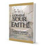 Examine your Faith Pamela Christian Book Review