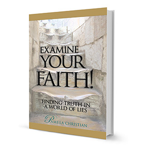 Examine your Faith Pamela Christian Book Review