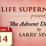 Day 14 Advent Calendar - Jesus, The Revealer of God's Sovereign Will by Larry Sparks